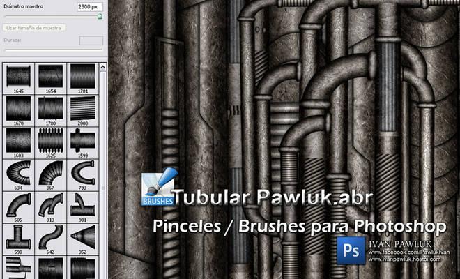 Brushes Tubular Pawluk