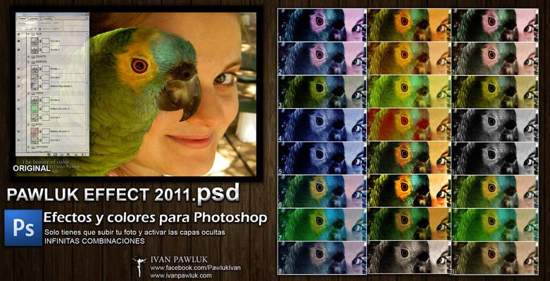 PAWLUK EFFECT 2011  psd