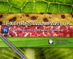 Natural Textures Ivan Pawluk
