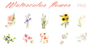 PNG#9 Watercolor Flower