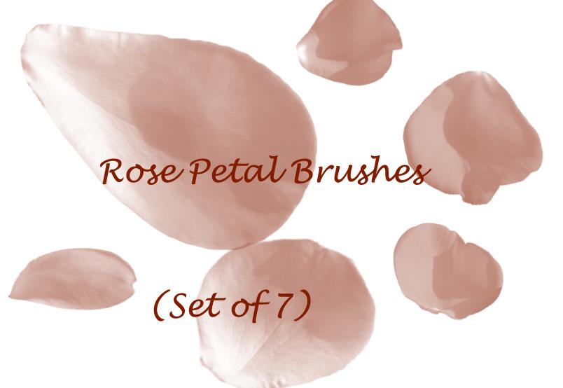 Rose Petal Brushes