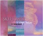 TEXTURE PACK 18 : SkyFlower