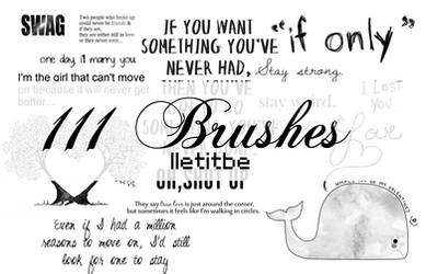 111 Variouse brushes.