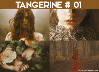 Tangerine by raggedywarrior by raggedywarrior