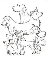 Dogs! colouring page