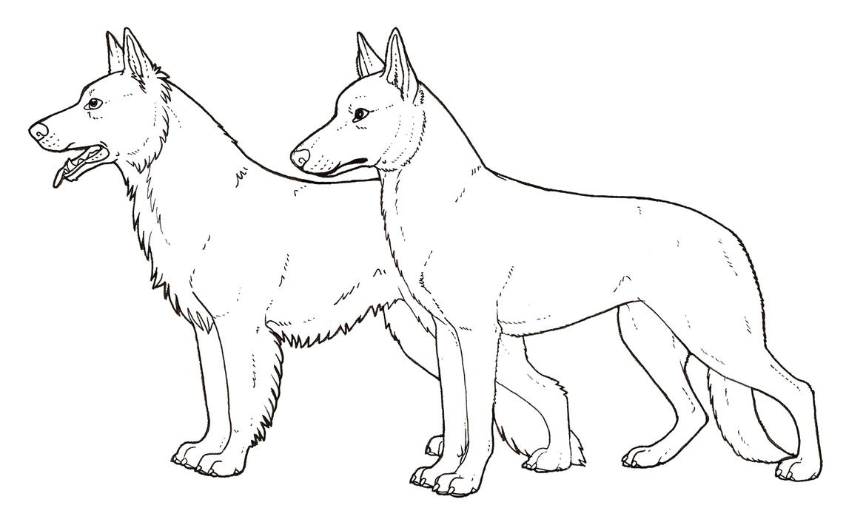 German shepherd dog colouring page by novablue