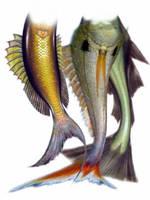 Mermaid tails pack 3 by gambingambin