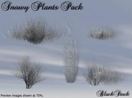 Snowy Plants Pack by BlackStock