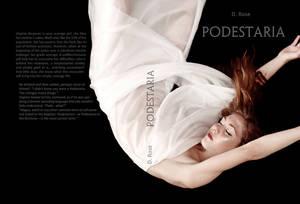 Podestaria - Chapter 12