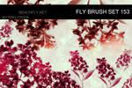 butterfly-stock_brush set 153