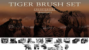 Tiger Brush Set