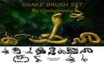 snakes brush set