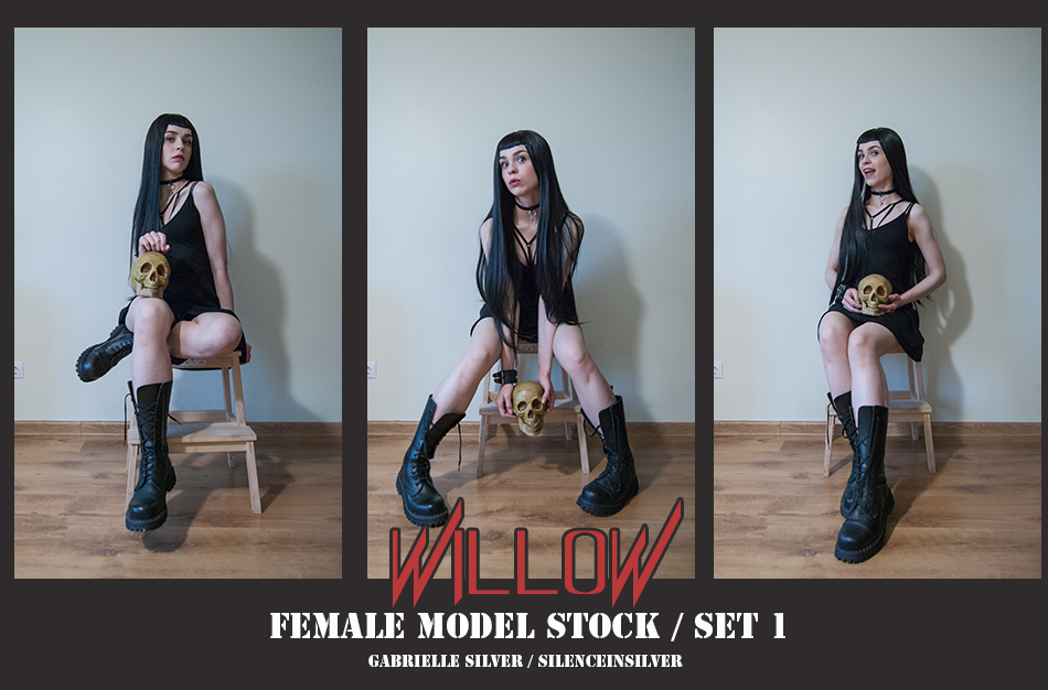 WILLOW - Model Stock Pack - 1