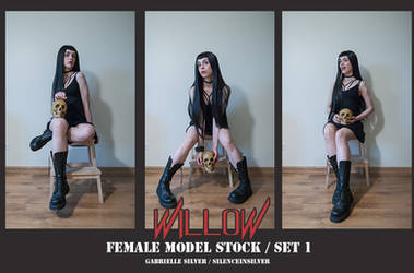 WILLOW - Model Stock Pack - 1 by SilenceInSilver