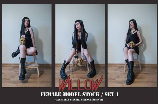 WILLOW - Model Stock Pack - 1