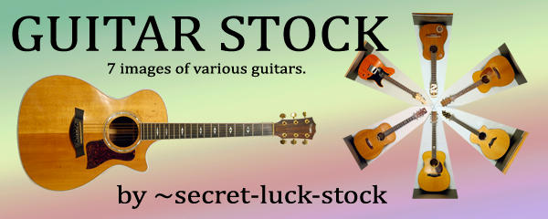 guitar stock package