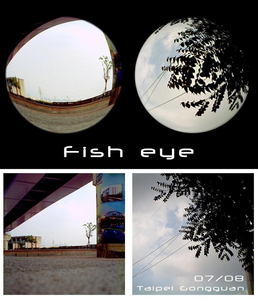 Lomo_fisheye by zin29