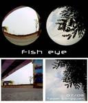 Lomo_fisheye