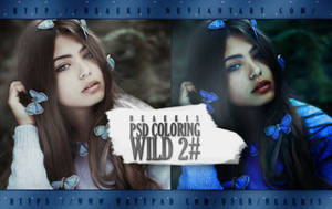 PSD Coloring / Wild 2# by neaekis