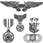 Military Badges and metals by Chrippy