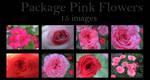 Package: Pink Flowers v1 15i by nityai