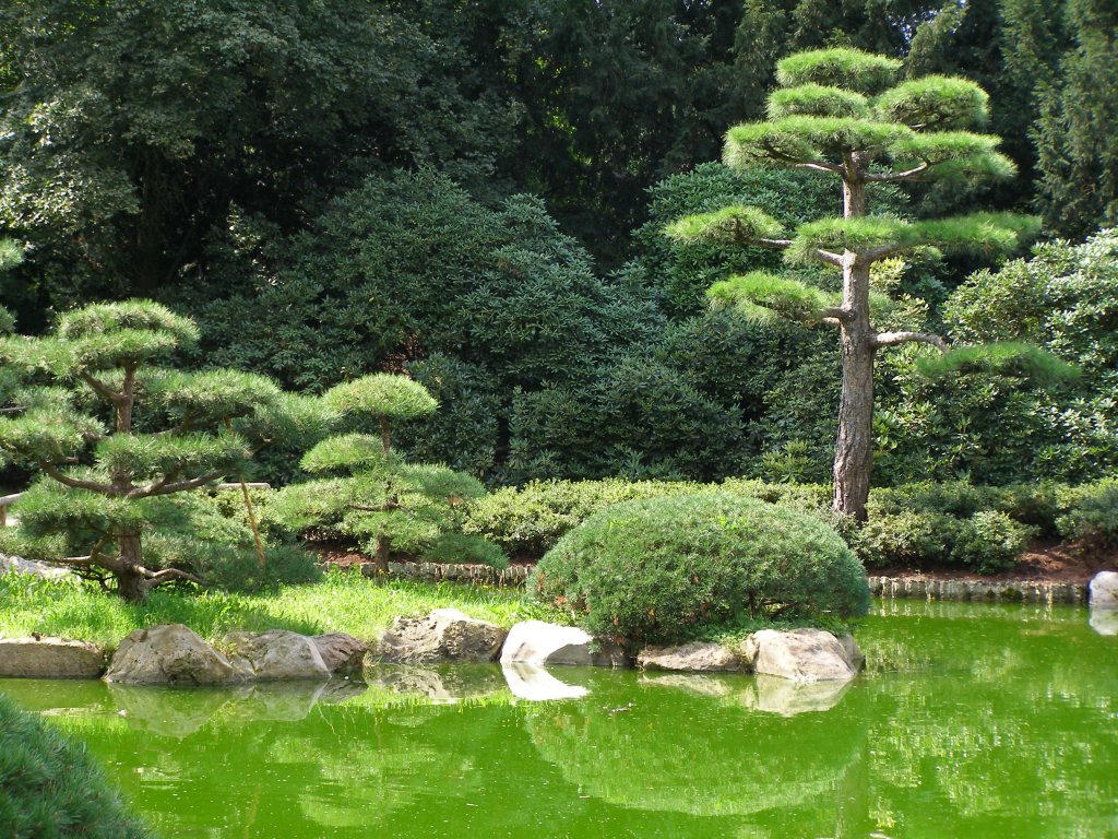 Japanese garden ii wp by signmeupscotty on deviantart for Japanese trees for landscaping