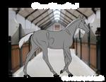 Breed Foal line   IMPORT
