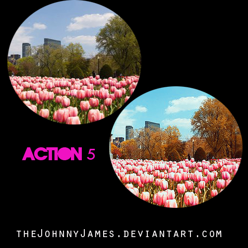 Action5-TheJohnnyJames by thejohnnyjames