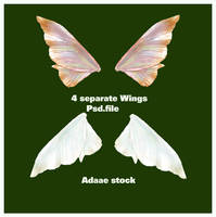 Wings by Adaae-stock