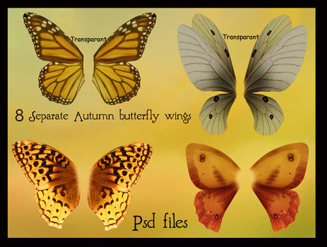 psd autumn butterfly wings set