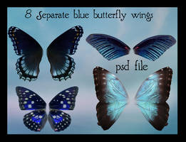 psd blue butterfly wings set by Adaae-stock
