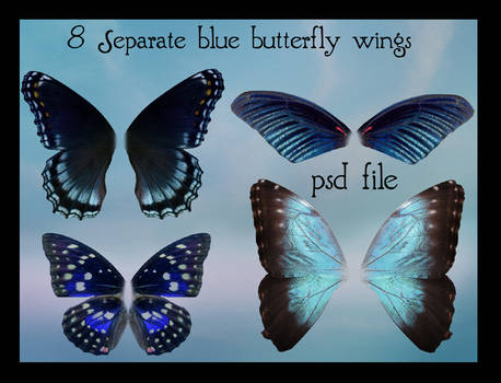 psd blue butterfly wings set