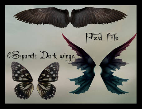 psd dark wings set