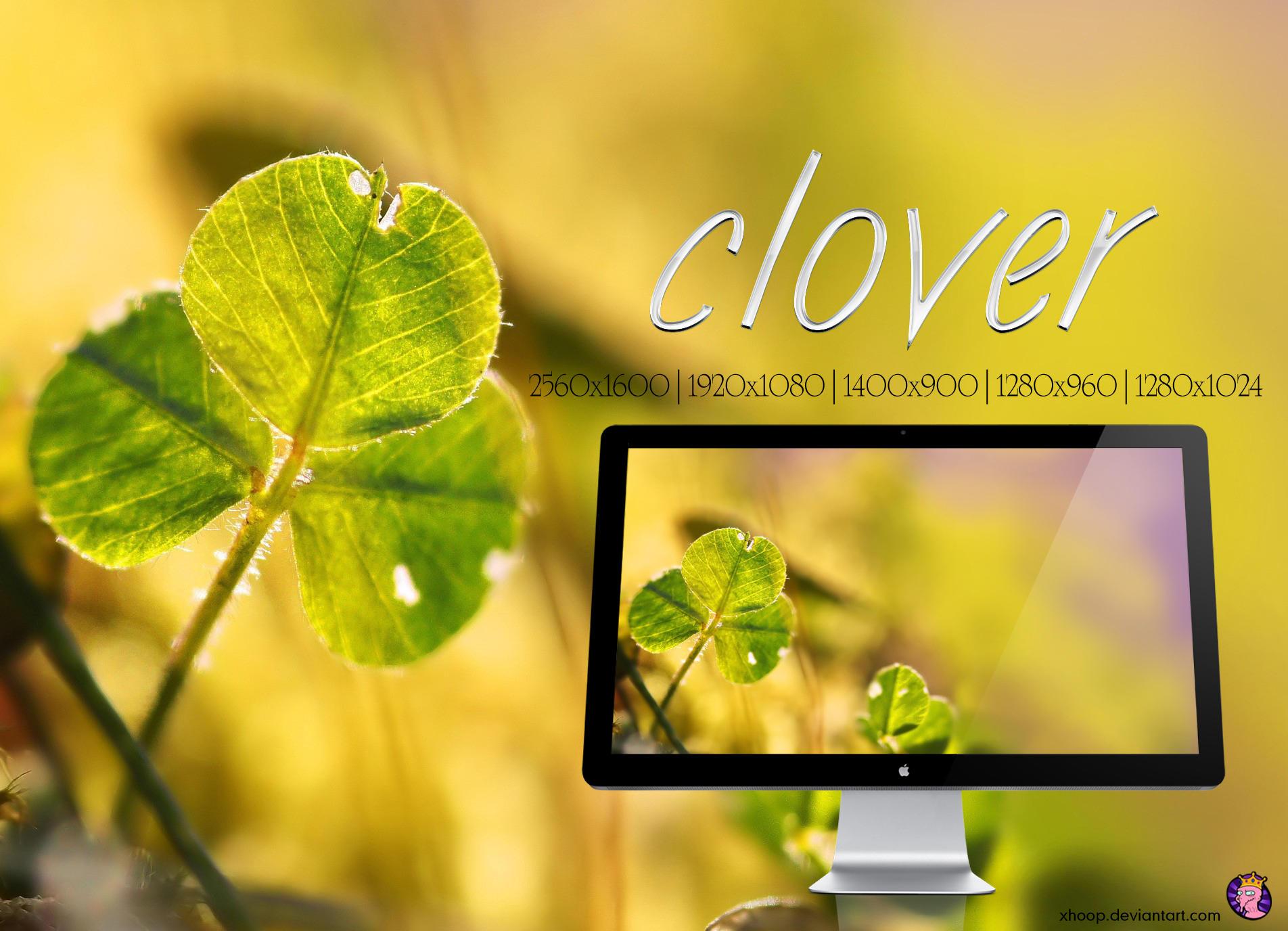 Clover wallpaper by xhoOp