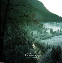 Cold Landscape by xhoOp