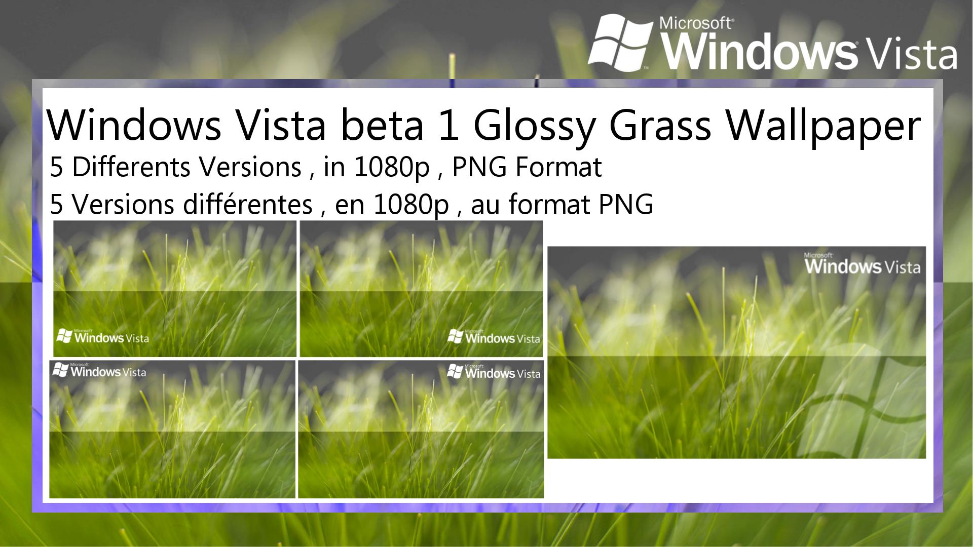 Windows Vista Beta 1 Glossy Grass Wallpaper Pack By Teknorider On