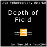 Depth of Field: Live Tutorial