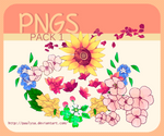 Png pack1