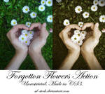 Forgotten Flowers Action