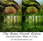 The Green Forest Action