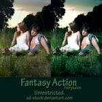 Fantasy Action 2