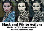 Black and White Actions 2
