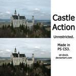 Castle Action