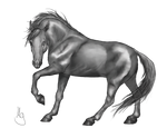 Prancing Horse Greyscale