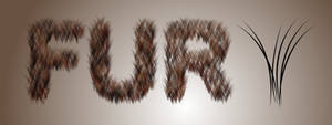 Fur Brush