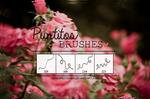 Puntito brushes