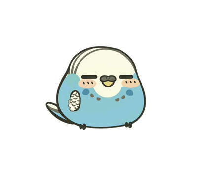 Pudgy budgie