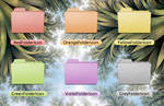 Colored Folders - Leopard