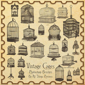 Vintage Birdcages Brushes
