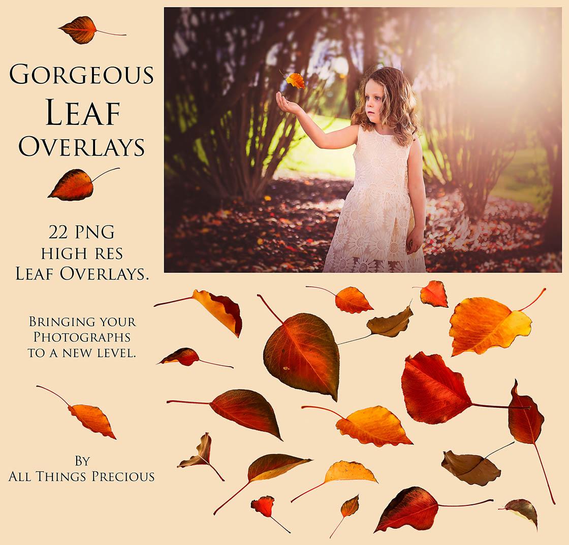 Leaf Overlays